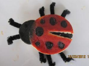 jali lady bugs45